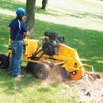 SC292 fresaceppi vermeer tree care
